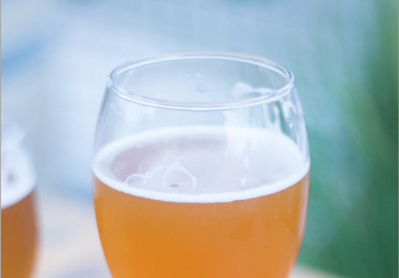 Bière pas chère ! (chant guerrier + recettes)